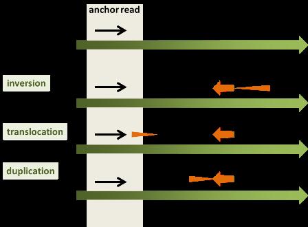 Split-read(others)